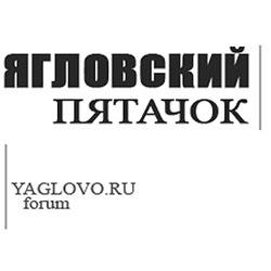 Ежегодное собрание жителей ТОС Яглово